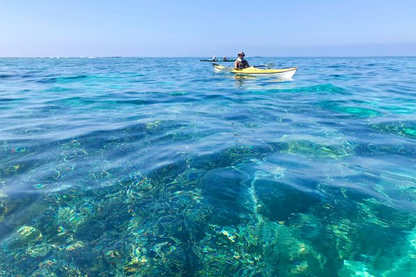 エメラルドブルーの奄美大島の海をシーカヤックで海上散歩!