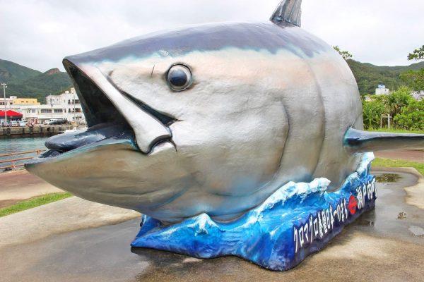 養殖クロマグロの生産地!奄美大島の「せとうち海の駅」で地物の海の幸を堪能しよう! イメージ