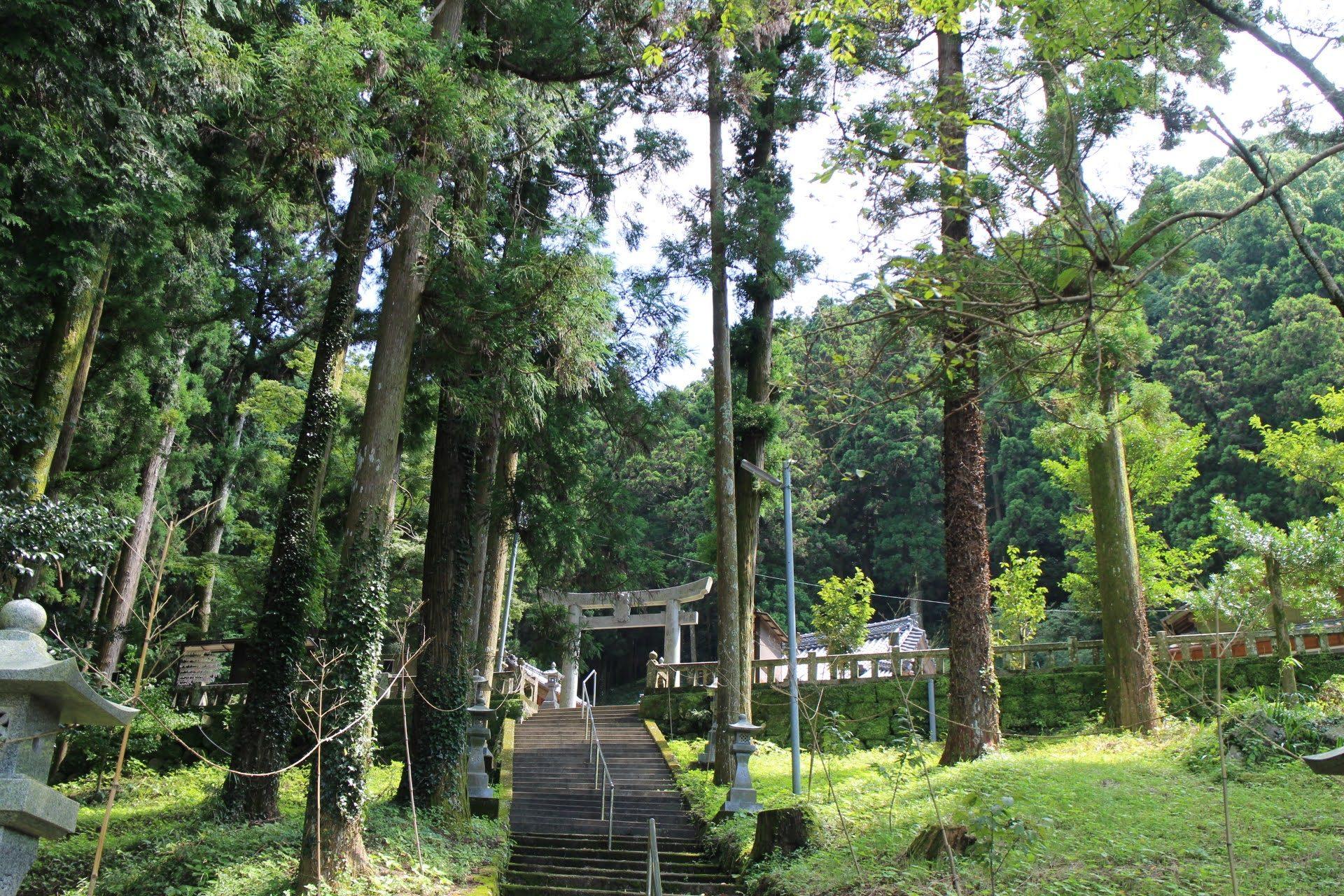 一枚目の写真の大きな鳥居から2.5㎞進んだ先に、神社はあります
