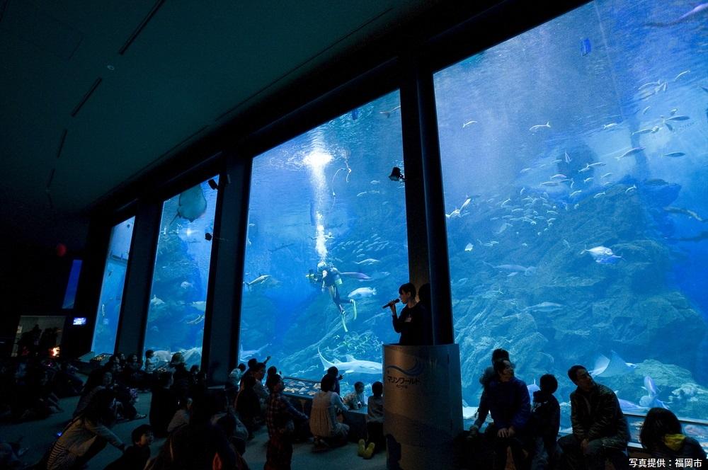 マリンワールド海の中道 福岡市 福岡 観光 名所 人気 スポット 九州 旅行 観光 おすすめ