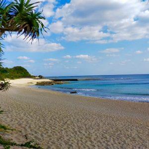 奄美大島 冬 旅行 一人 旅