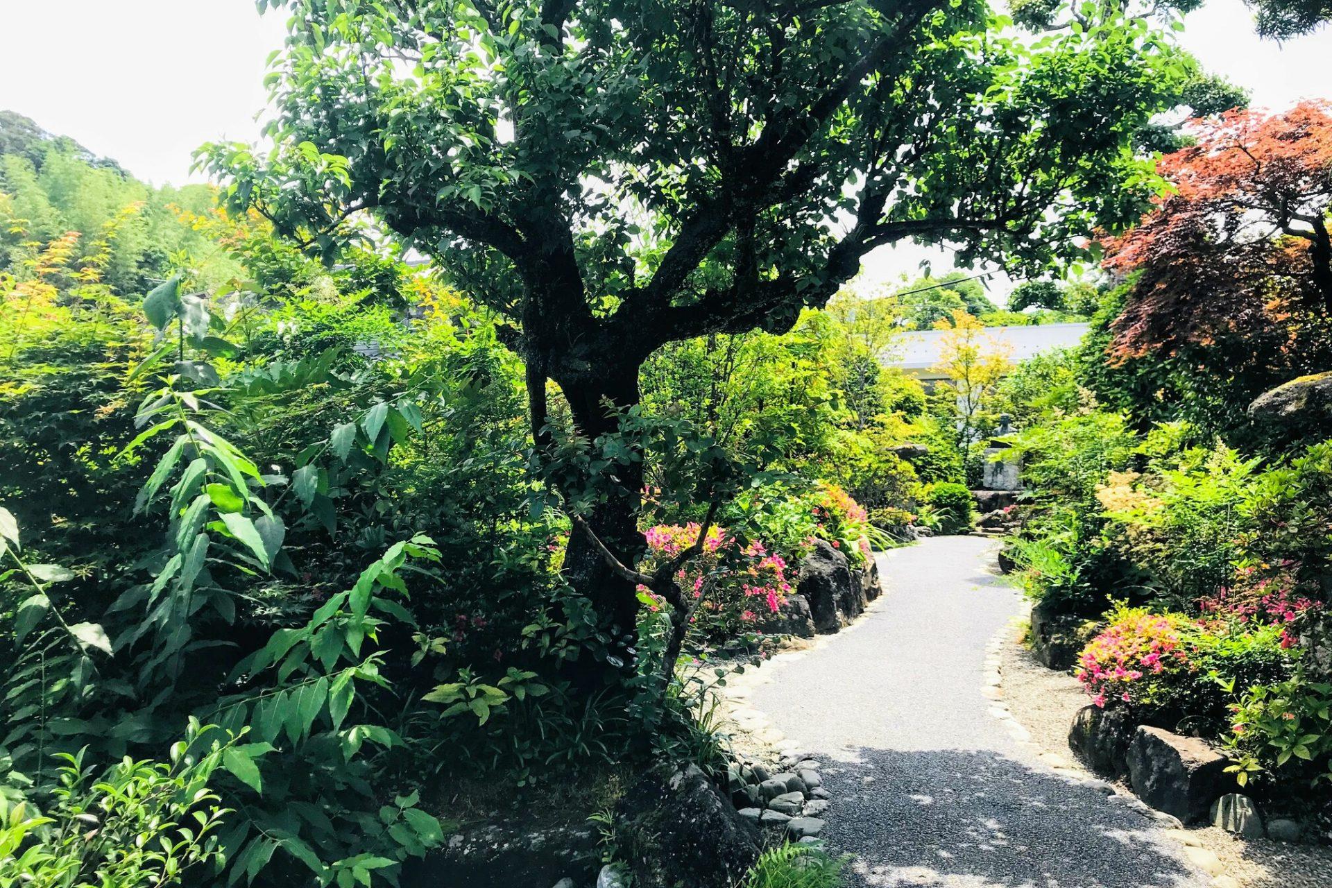本坊家旧宅 寶常 ほうじょう 庭園
