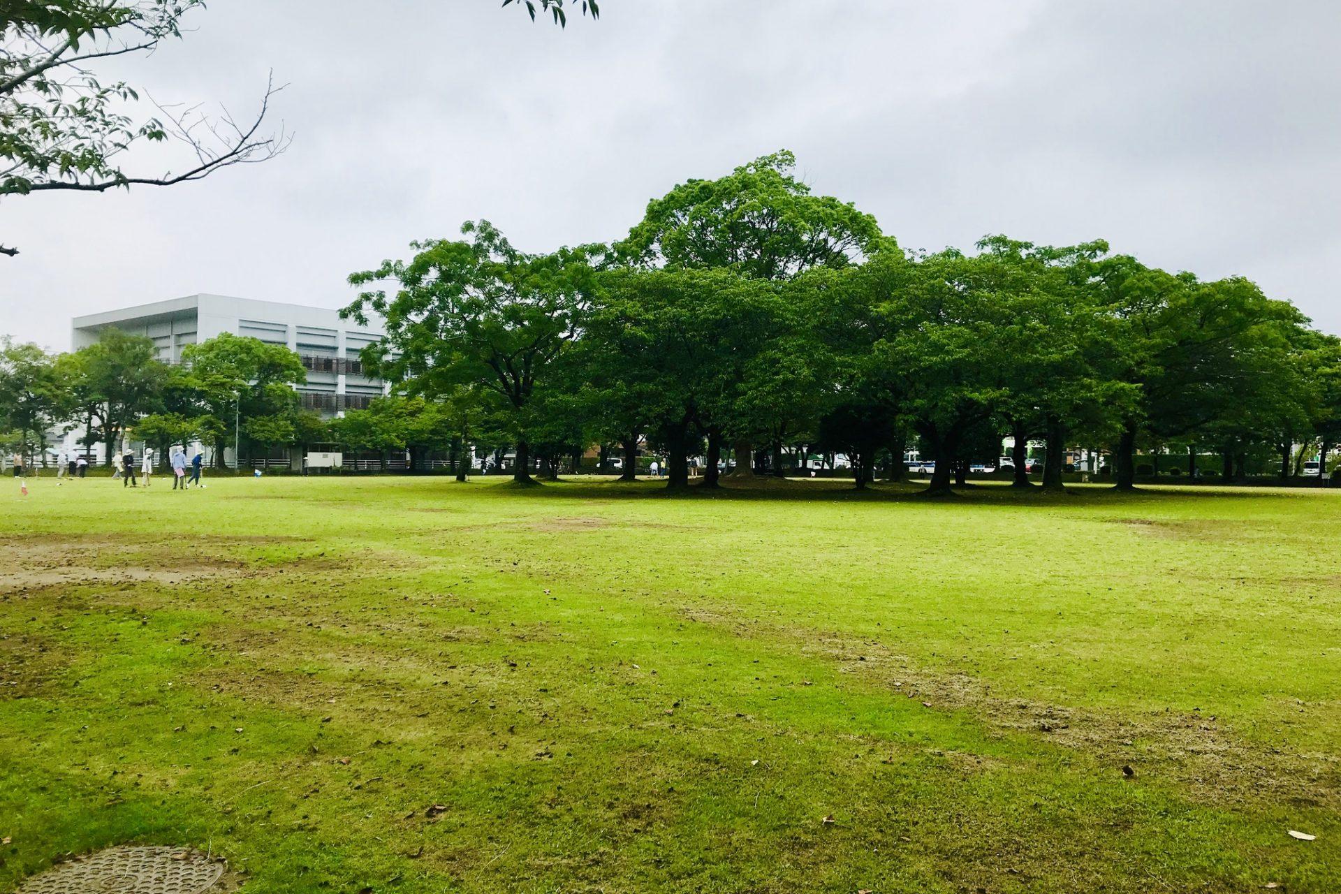 宮崎中央公園 宮崎駅 大淀川 橘公園 ウォーキング コース さるく