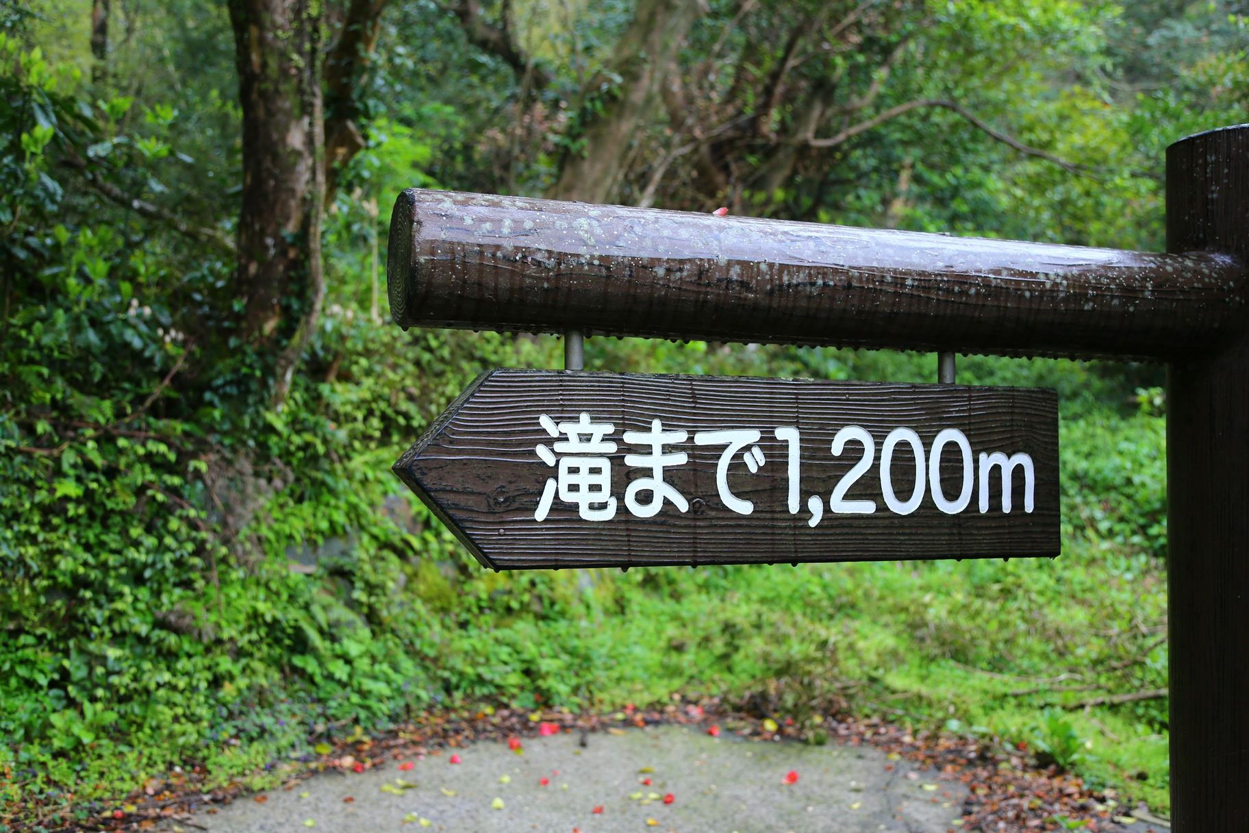 南大隅町 雄川の滝