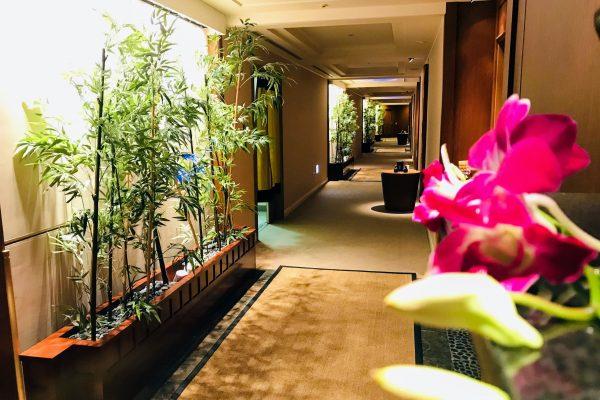 宮崎 リゾートホテル シェラトン グランデ オーシャン