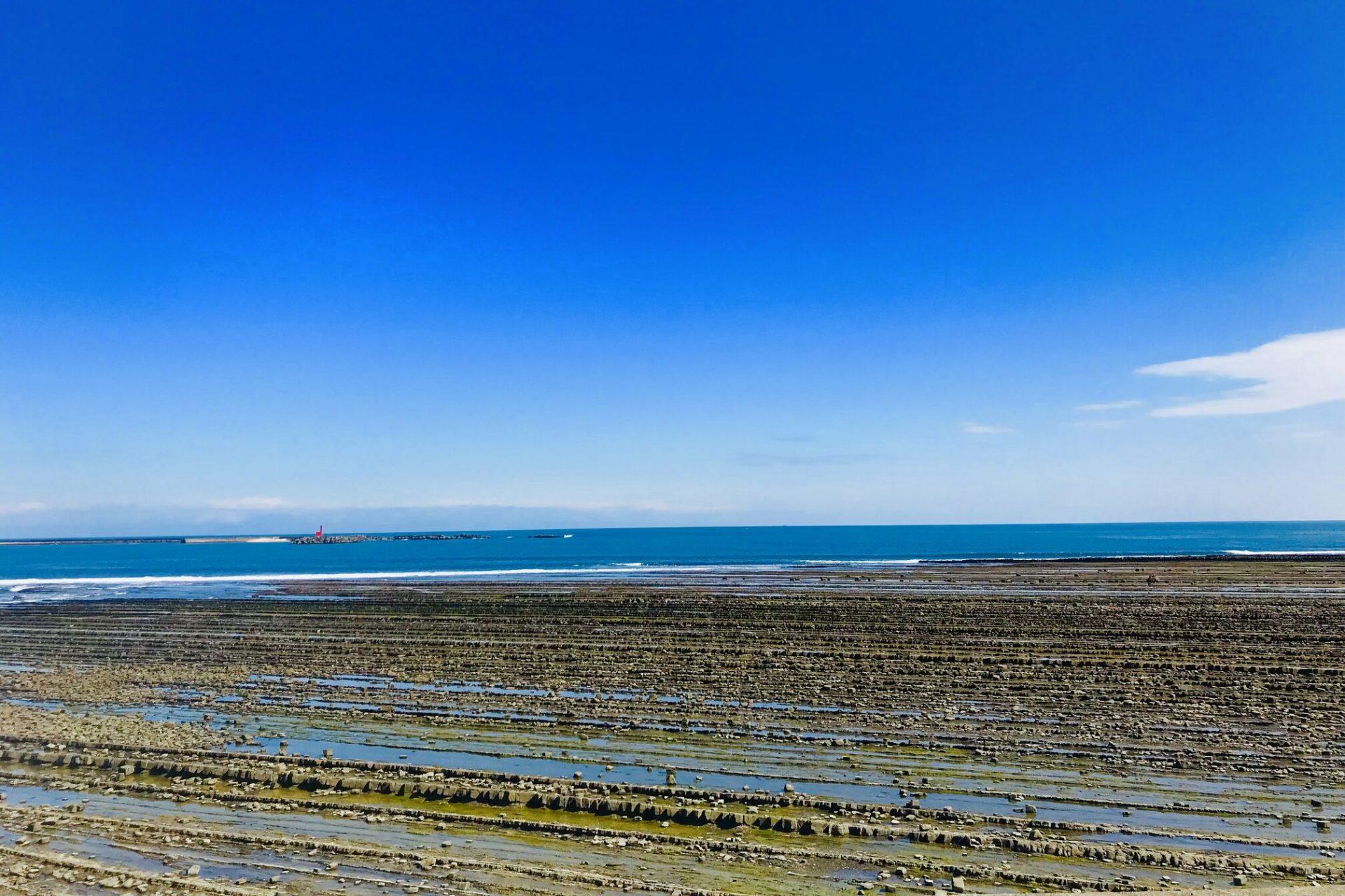 青島海岸 鬼の洗濯板