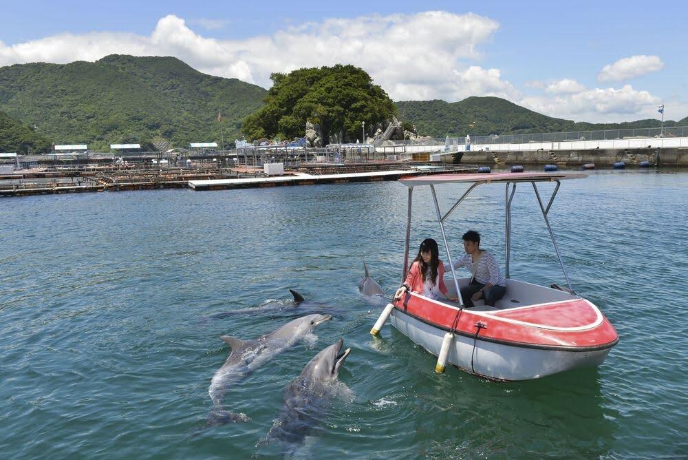 うみたま体験パーク つくみイルカ島 津久見市 大分県 観光 名所 人気 おすすめ 九州 旅行