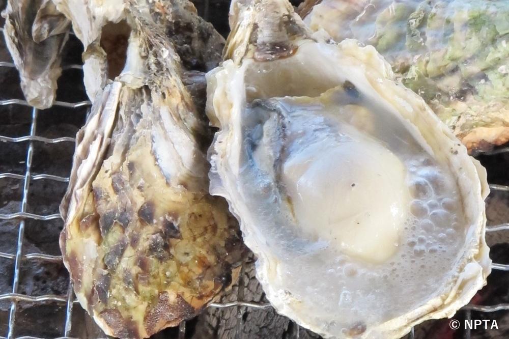 九十九島牡蠣 長崎 ご当地 グルメ 有名な 食べ物 おすすめ 名物 料理