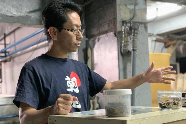 喜界島の朝日酒造