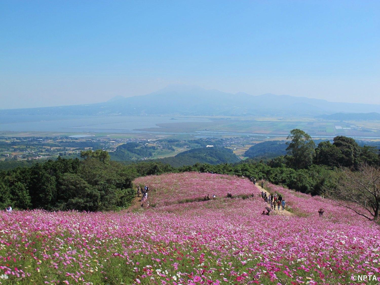 白木峰高原 諫早市 長崎 絶景 スポット 九州 旅行 観光 自然 おすすめ