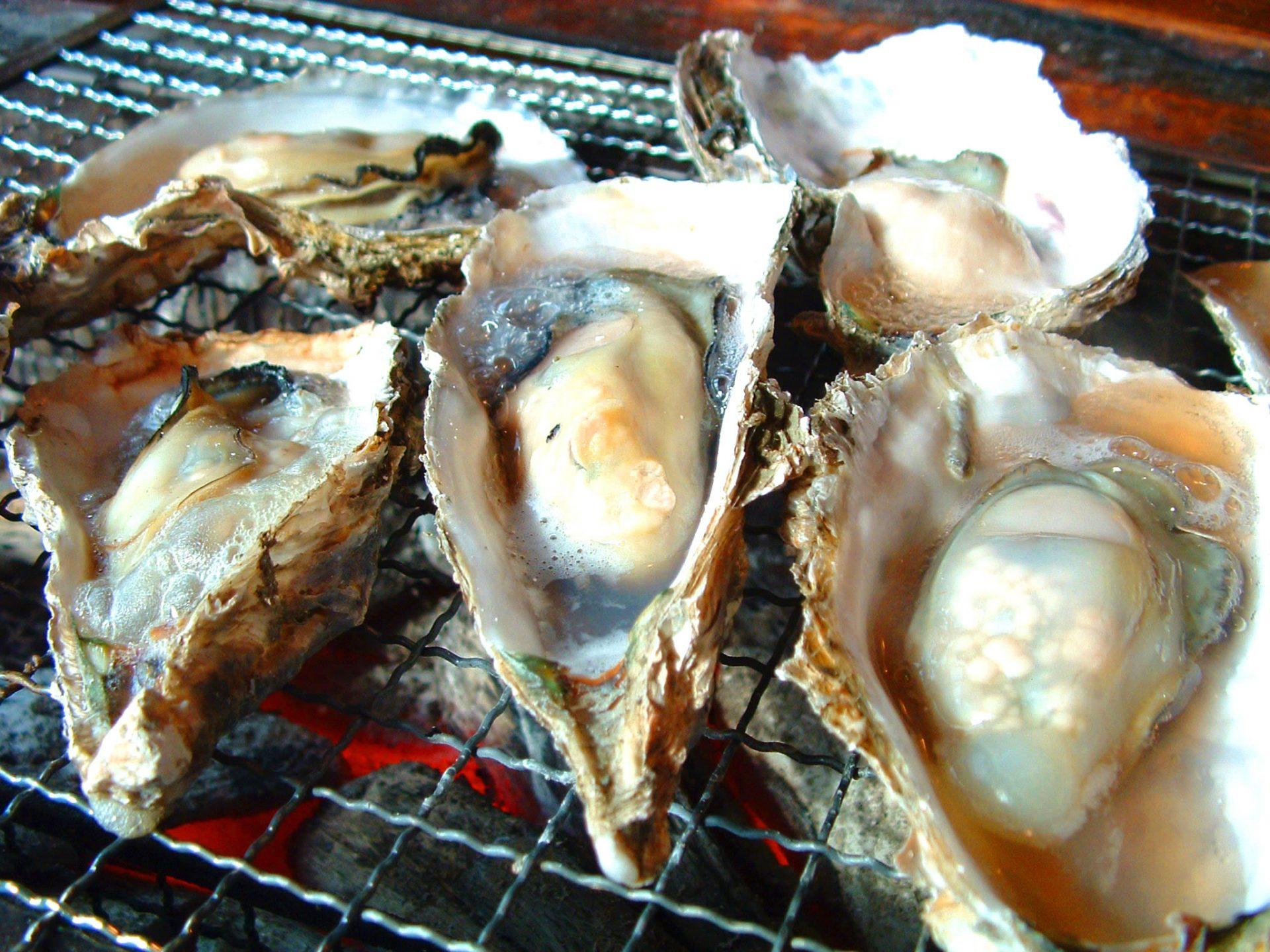 牡蠣 大分 名産 特産 品 旅行 観光 ローカルグルメ 地元