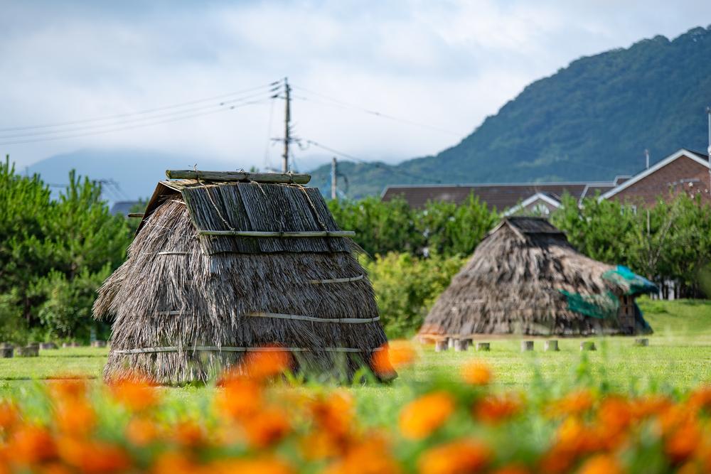 いせきんぐ宗像 福岡 宗像 観光 おすすめ 旅行 九州