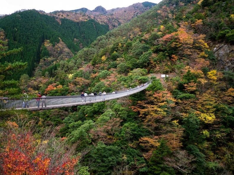 熊本 九州 秘境 穴場 絶景 観光 旅行 おすすめ 五家荘(梅の木轟公園吊橋)