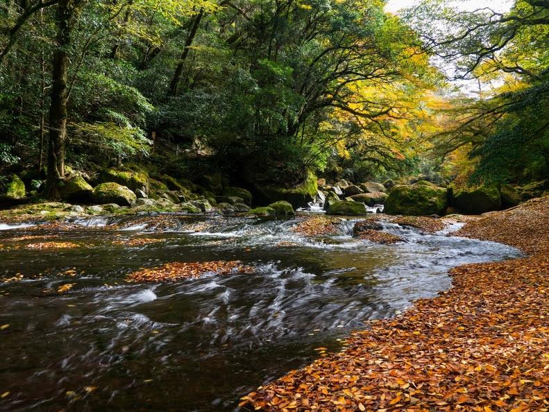 菊池市 菊池渓谷 熊本 絶景 景色 自然 九州 旅行 観光 おすすめ