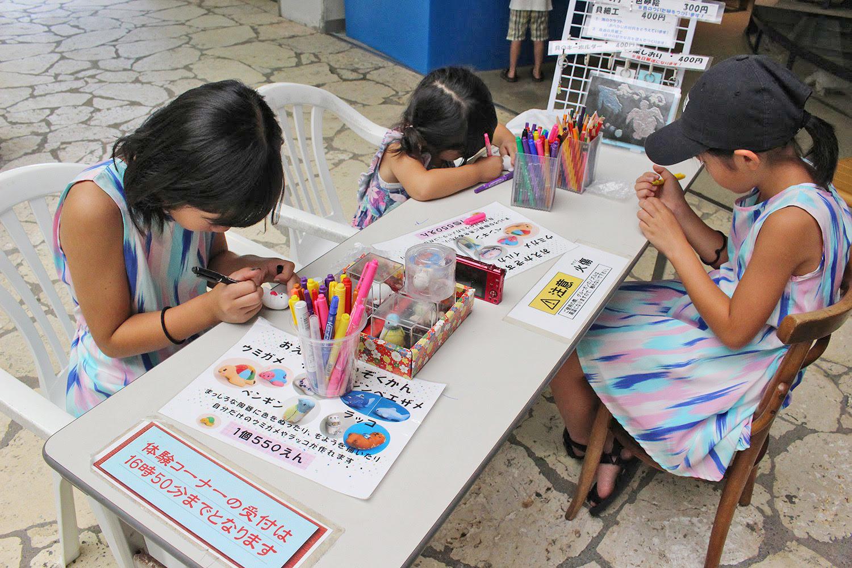 体験 コーナー 奄美海洋展示館 大浜海浜公園 ウミガメ