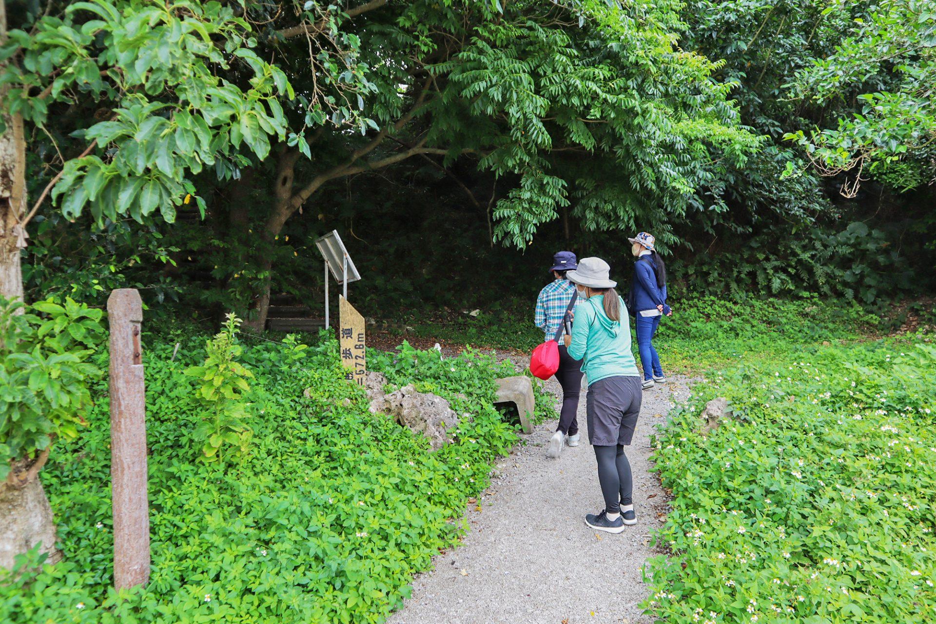 沖縄本島南部の八重瀬町「ホロホローの森」でトレッキングを楽しむ