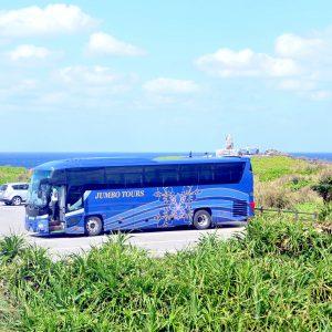 日帰り観光バスツアーでやんばるへ!世界に誇る沖縄北部のディープな自然と絶景を満喫の旅