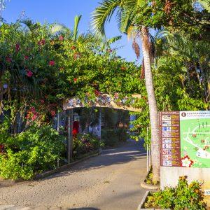 4000本の樹木が生育!「宮古島市熱帯植物園」