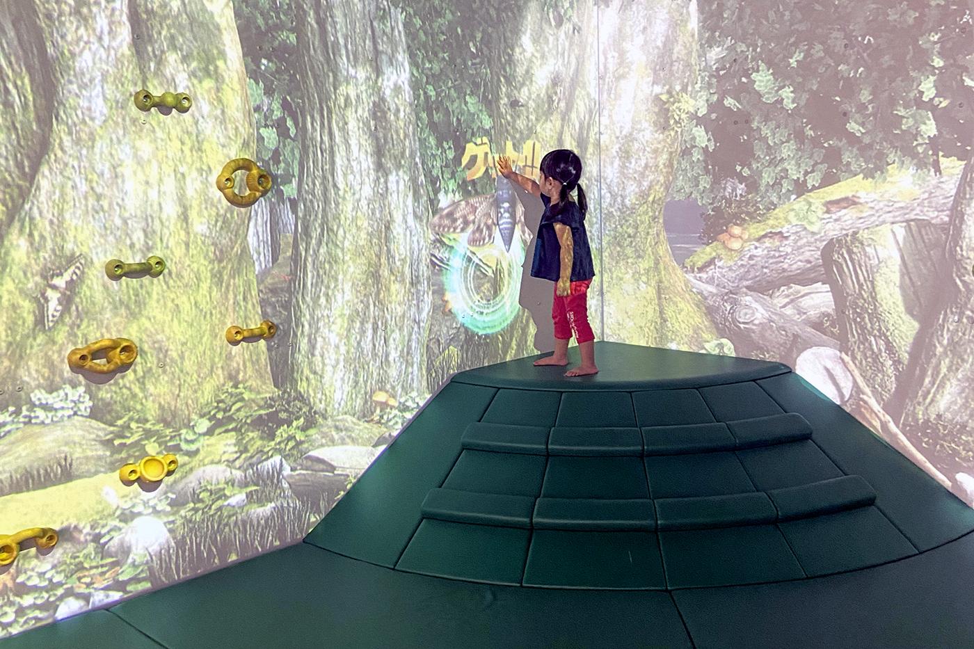 【対象年齢:5歳~12歳】屋内木のぼり 森の子