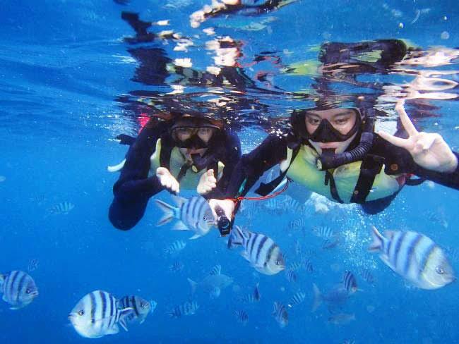 海 ダイビング マリン アクティビティ スポーツ 夏 9月 10月 値下げ 安い 安く 沖縄 旅行 お得 安価