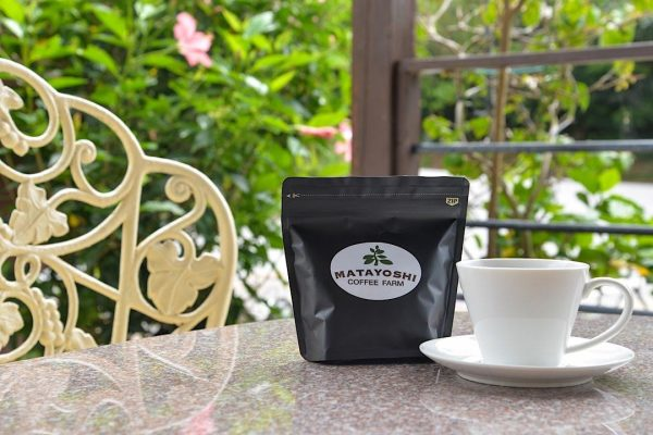 えっっ!沖縄県産コーヒーが飲めちゃうの!? 収穫体験も大人気、東村の「又吉コーヒー園」