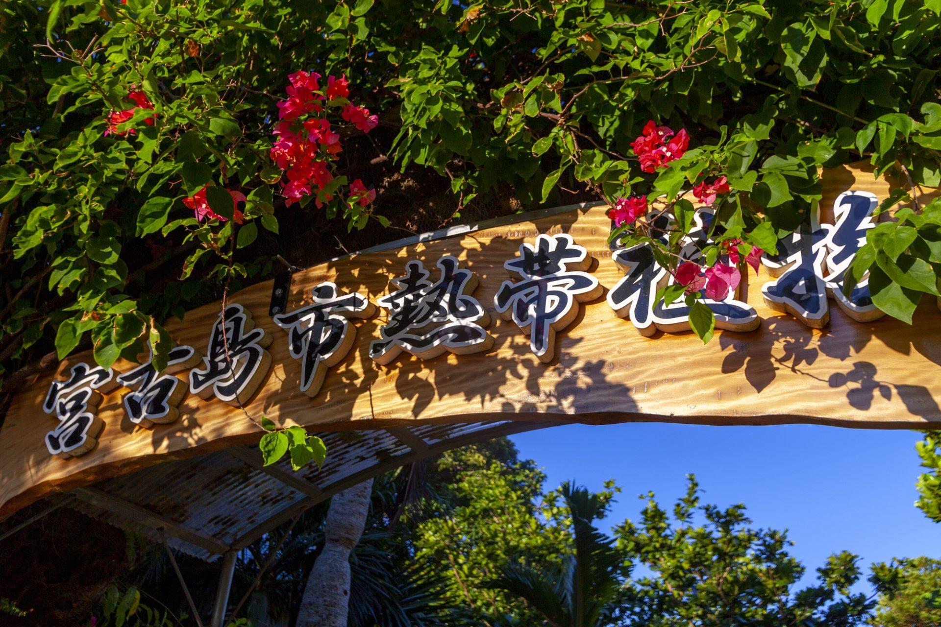 宮古島市平良にある「宮古島市熱帯植物園」