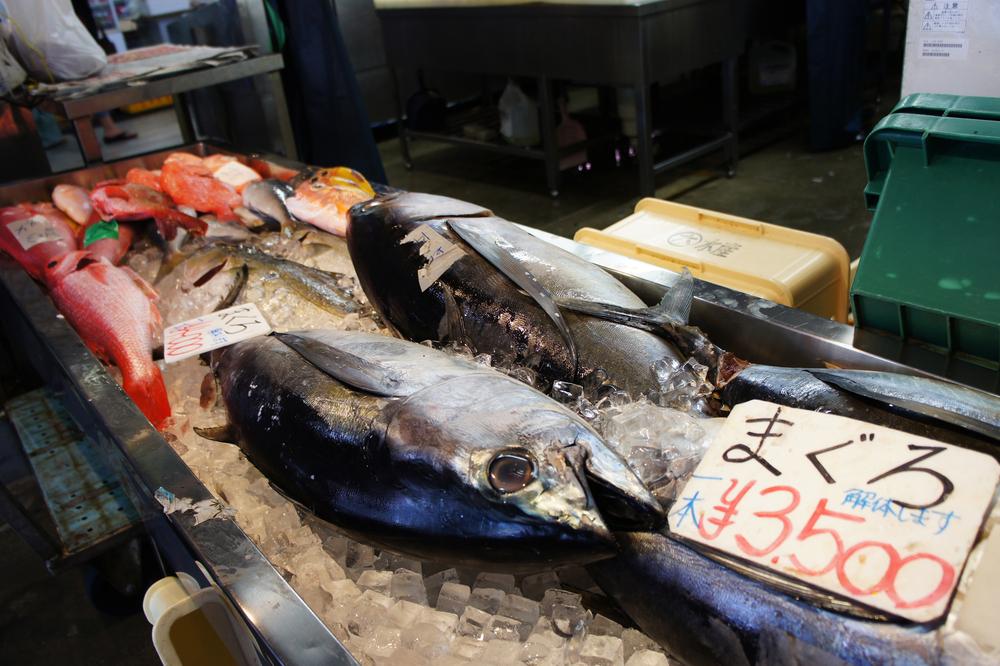 沖縄 マグロ 魚