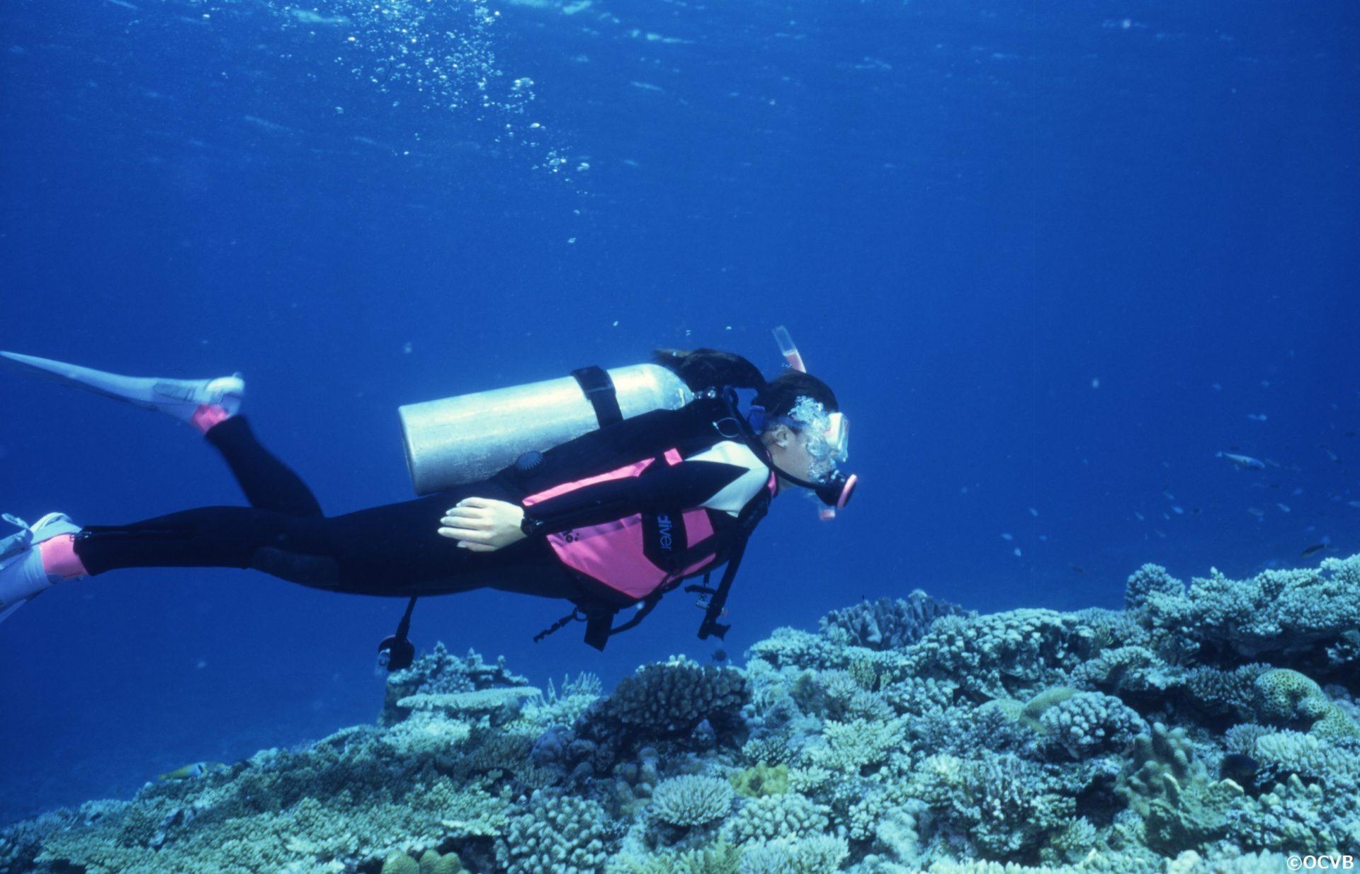 ダイビング 体験 沖縄 旅行 カップル