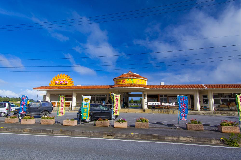 サンライズひがし 東村 沖縄 北部 観光 おすすめ 旅行 スポット 地