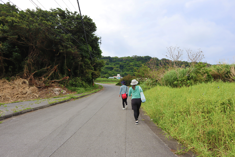 ゆるやかな坂を上がり、道沿いに歩きます。
