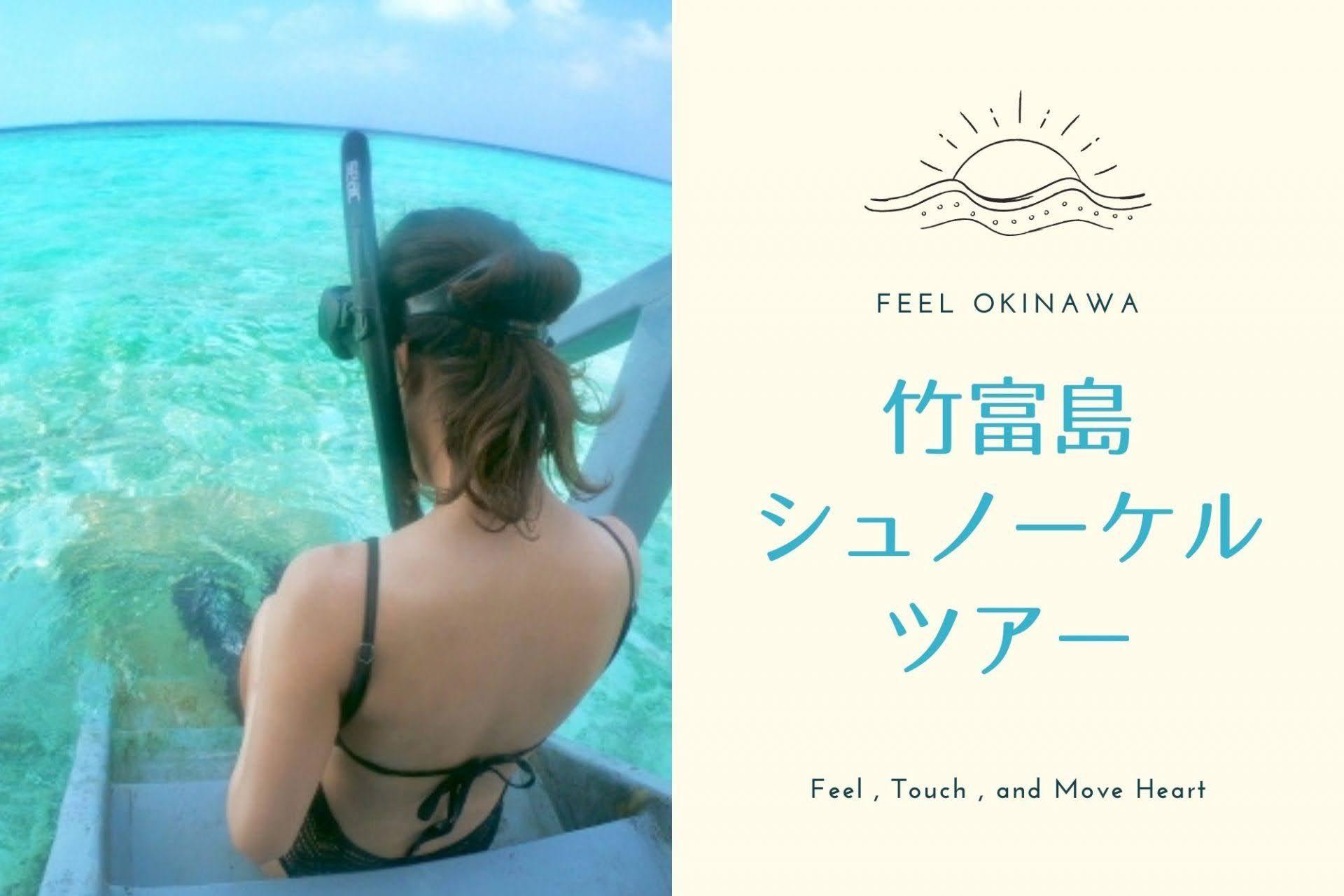 竹富島の海を堪能!シュノーケルツアー