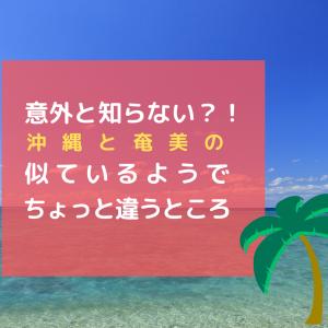 意外と知らない!?沖縄と奄美の似ているようでちょっと違うところ