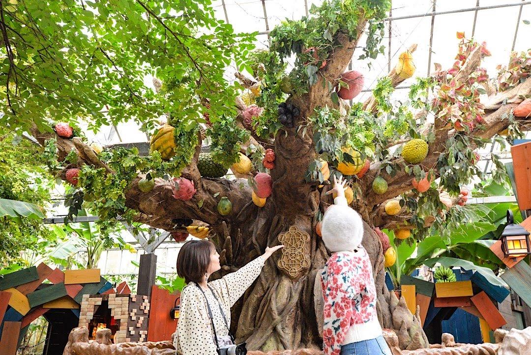 雨の日の観光におすすめ!沖縄北部「OKINAWAフルーツらんど」