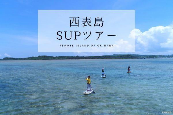 亜熱帯の森!西表島のおすすめSUPツアー3選 イメージ