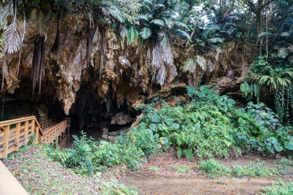 沖縄 鍾乳洞 洞窟 歴史 自然 旅行 観光