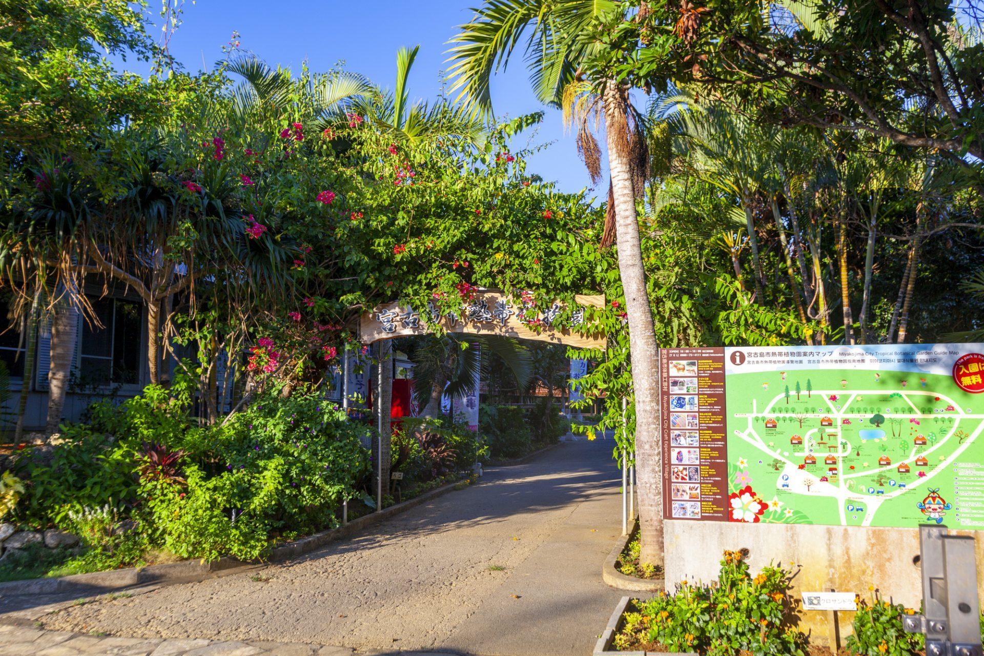 宮古島市熱帯植物園 宮古島 観光 スポット おすすめ 沖縄 旅行