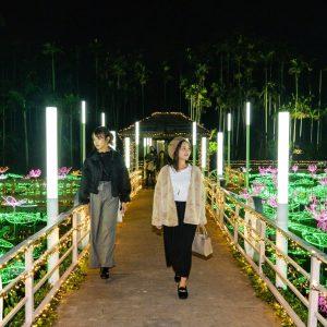 沖縄市 イルミネーション ひかりの散歩道 2019 2020 東南植物楽園