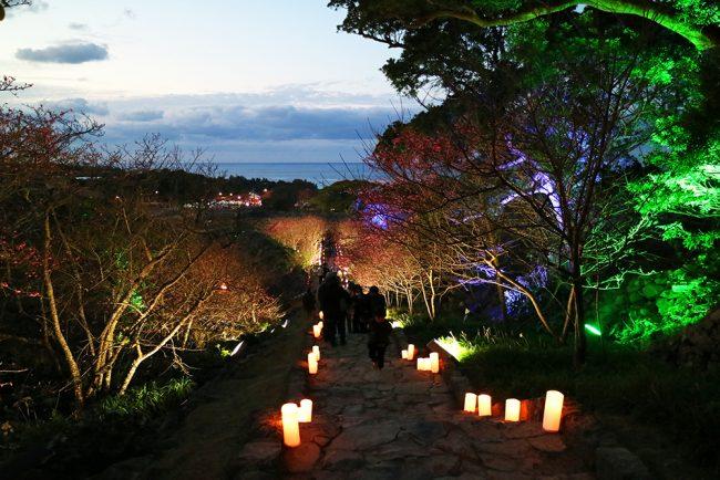 今帰仁城跡ライトアップ