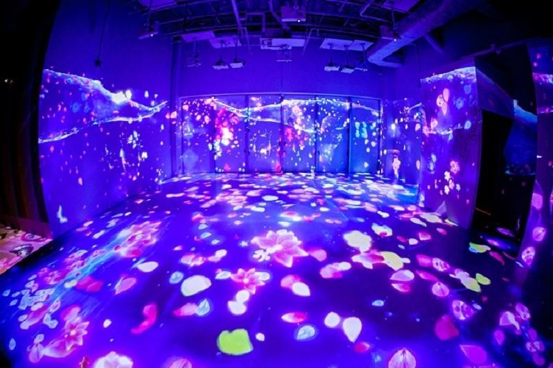 プロジェクトマッピング イーアス沖縄豊崎 iias ステムリゾートひたすら可愛いミュージアム