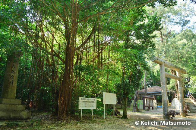 大東神社 おすすめ 南大東島 観光 旅行 沖縄 離島
