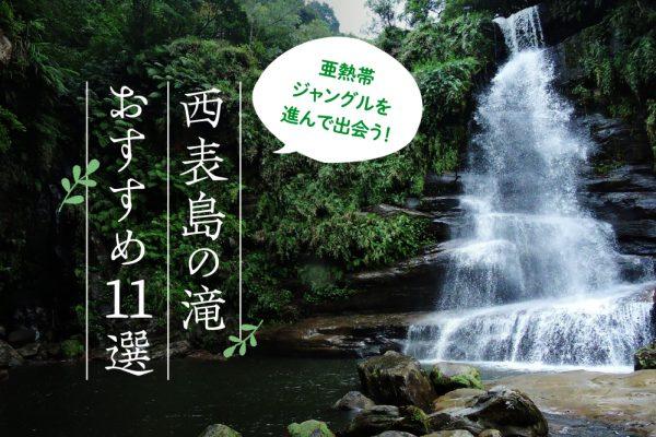 亜熱帯ジャングルを進んで出会う!西表島の滝おすすめ11選