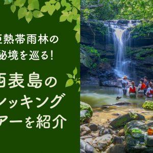 亜熱帯雨林の秘境を巡る!西表島のトレッキングツアーを紹介