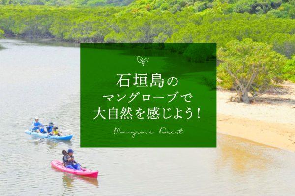 石垣島のマングローブで沖縄の大自然を感じよう!アクティビティ紹介