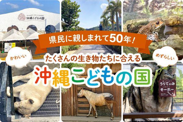 県民に親しまれて50年!かわいい・ めずらしい・たくさんの生き物たちに合える沖縄市「沖縄こどもの国」
