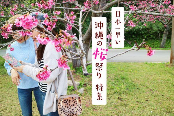 1月・2月開催!日本一早い「沖縄の桜祭り」特集