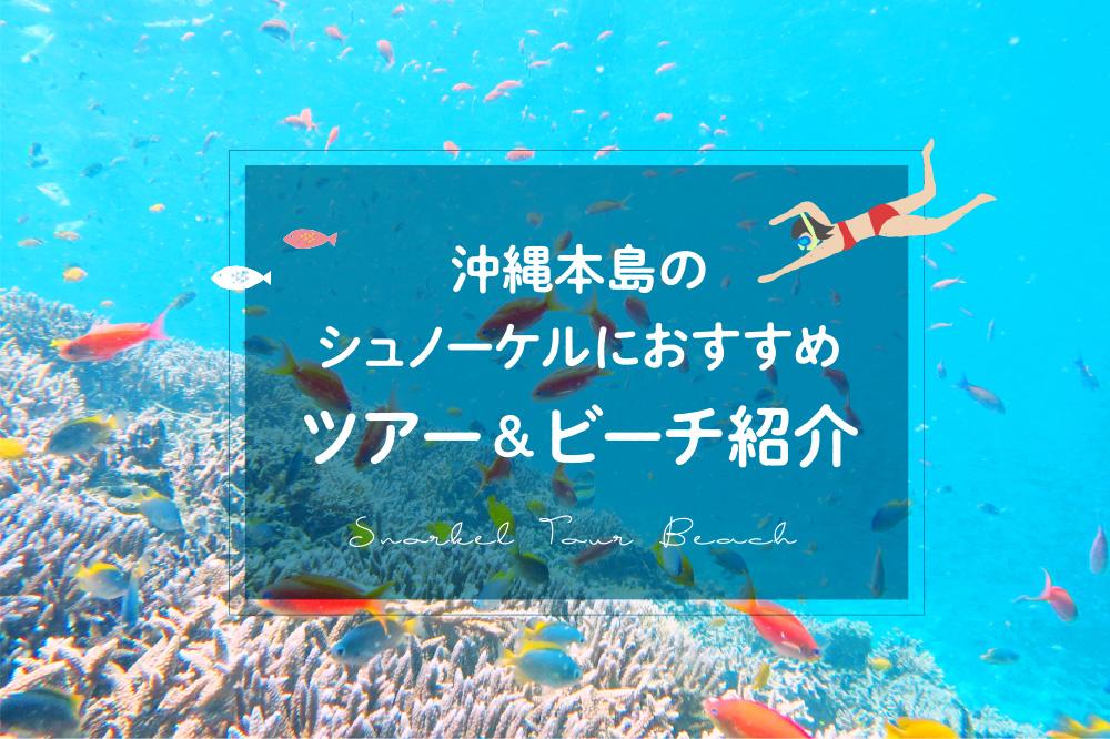 沖縄本島のシュノーケルにおすすめ ツアー&ビーチ紹介