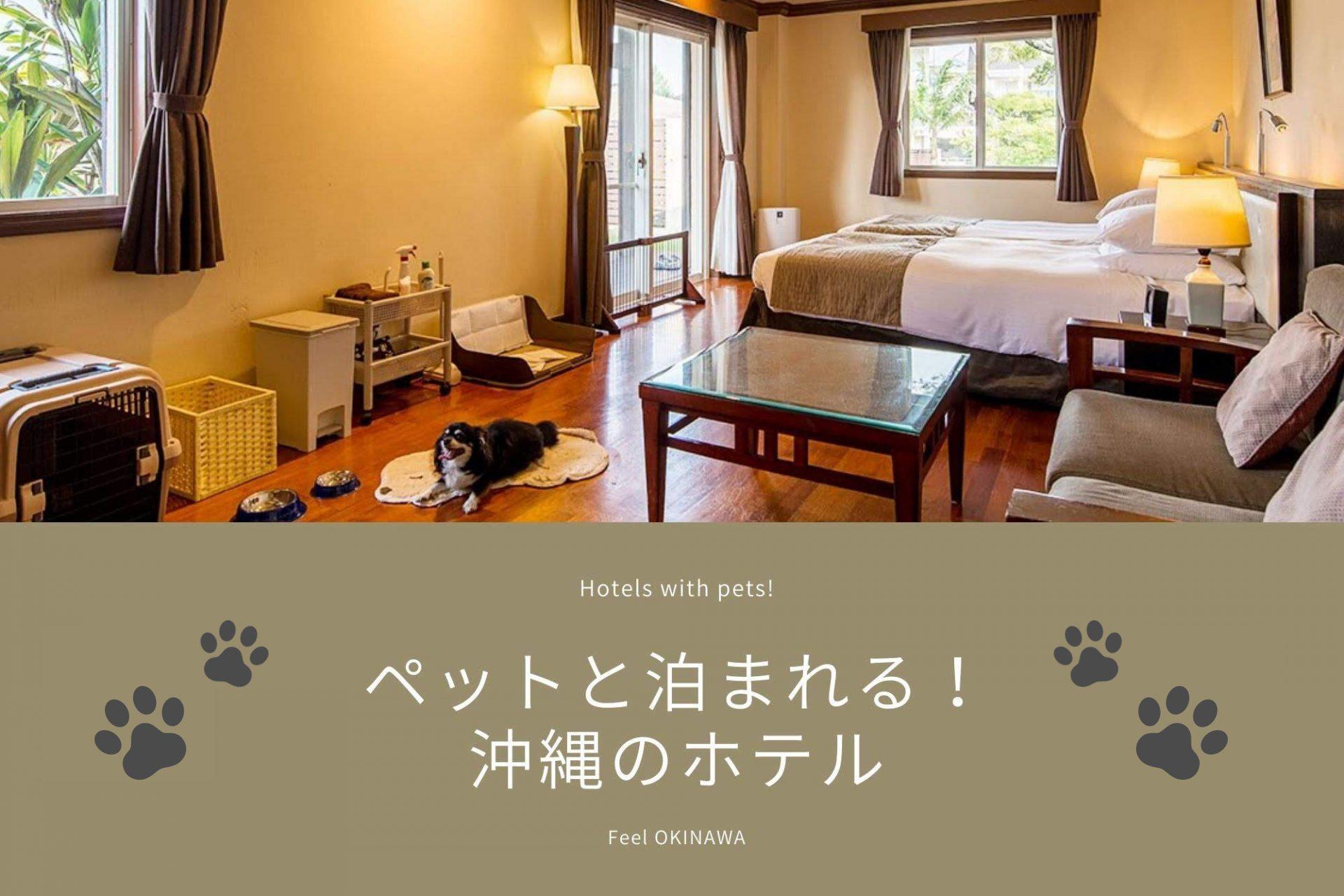 沖縄 ペット 可 ホテル