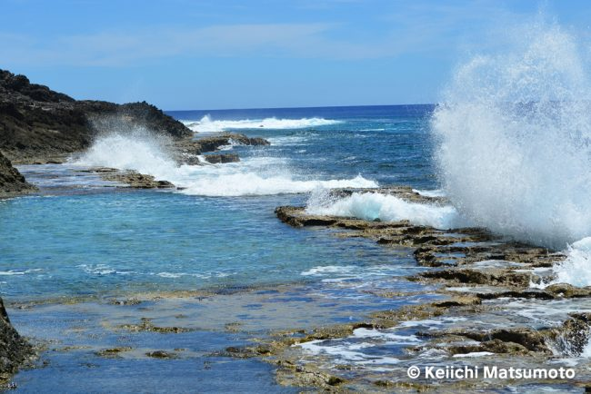 塩屋プール おすすめ 南大東島 観光 旅行 沖縄 離島