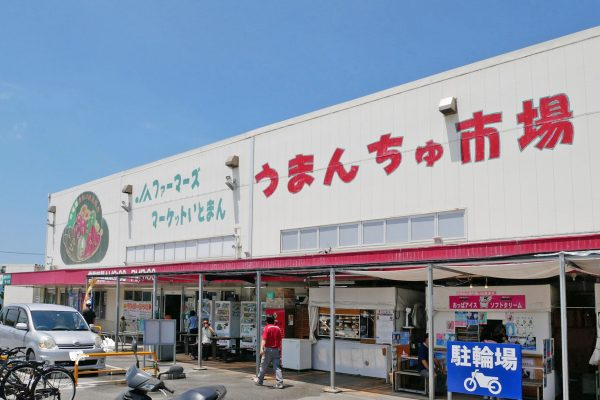 沖縄でマンゴーを買うならファーマーズマーケット!糸満市「うまんちゅ市場」は品揃えが豊富 イメージ
